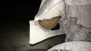 Swarm on mine truck