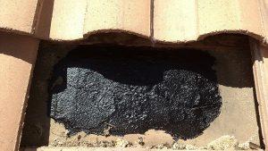Desert Swarm Bee Removal, LLC